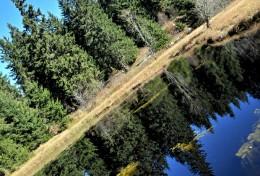Дајићко језеро • Голија